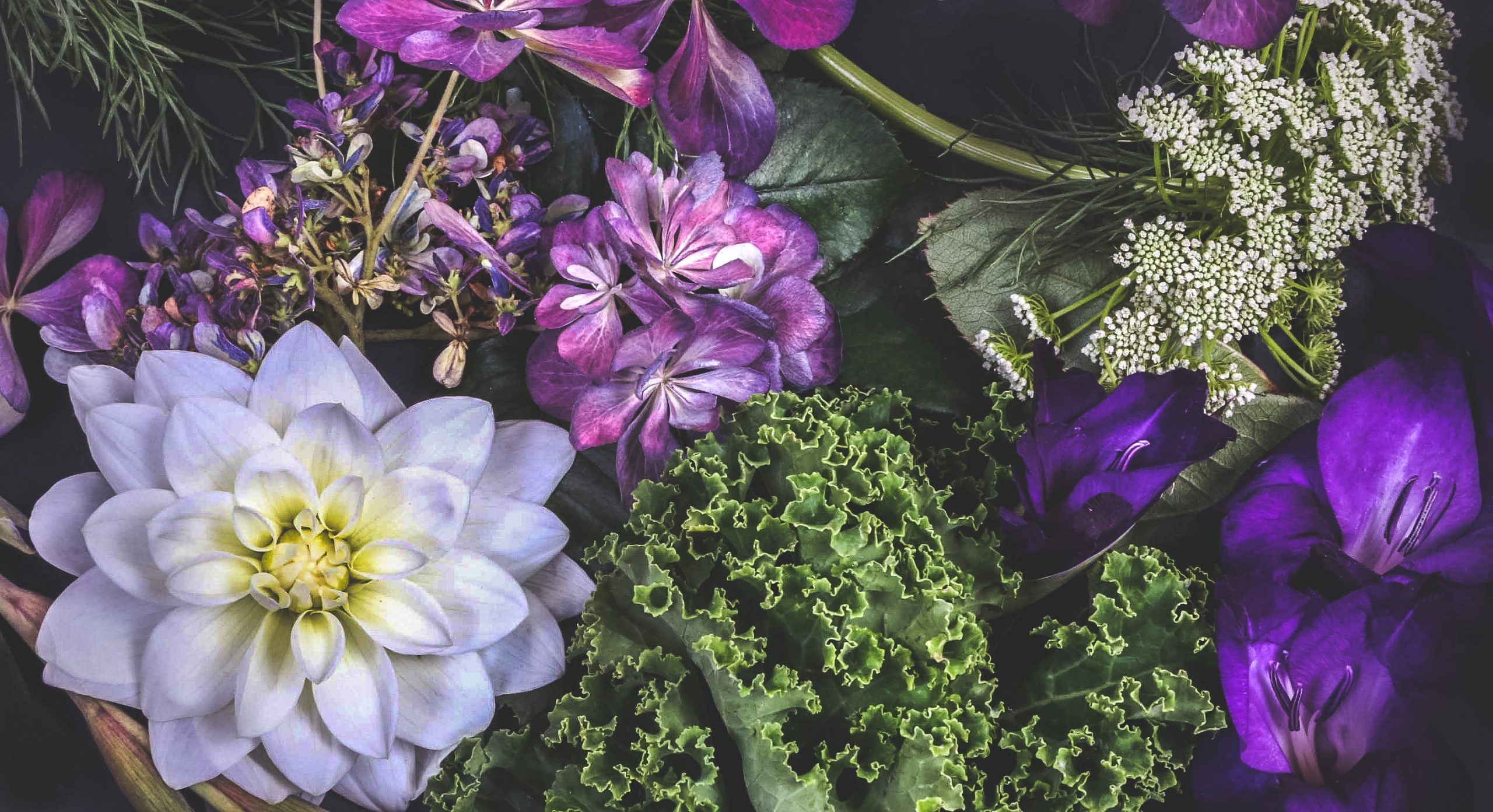 Dutch Flower Line